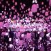 東京台場新景點:teamLab Borderless〜新感官藝術美術館夢幻重點總整理〜