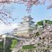 不用再靠旅遊雜誌啦!關西四季旅遊行程攻略幫你整理好囉~|Cue日本 ~讓你的生活變得更有意義~