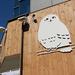 在貓頭鷹空間裏享受孕育美和健康 新鮮蔬菜餐廳「Shiny Owl