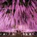 【日本旅遊】好拍好玩!關東地區十大景點別錯過