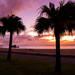 沖繩北谷怎麼玩?自駕汽機車勇闖浪漫觀星點 聽海唱歌給你聽