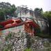 日本的世界遺產系列No.16ー紀伊山地的靈場與參詣道