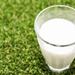 最適合當早餐的牛奶是?~日本4款牛奶比較!