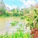 靜岡濱松的春季花博去過了嗎?帶你去美不勝收的濱名湖 Garden park 花的美術館