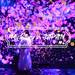 東京台場新景點:teamLab Borderless〜結合數位、藝術、互動娛樂的新感官藝術美術館〜