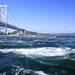 日本第一個島嶼?! 來淡路島欣賞世界第一大的鳴門漩渦