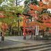 【京都賞楓私房景點】「鍬山神社」紅葉拱橋 秋日打卡新景點