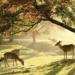 奈良美麗的秋天:您必看的5個景點