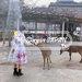 【我的日本生活物語】奈良除了小鹿,還有半人半鹿的魔性吉祥物!