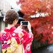 京都好拍景點~網紅超愛!最上鏡的神社寺廟編~
