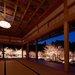 在幽玄的夜間燈光照射下…嚴選9處京都府櫻花點燈私房景點