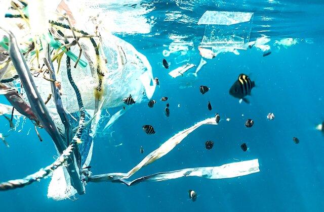 プラスチックは本当に環境の敵? 日本の資源循環に変化を起こす、新しいブロックチェーンとは(連載8回目)