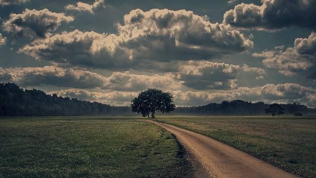 Away Lane Nature - Free photo on Pixabay (2102)