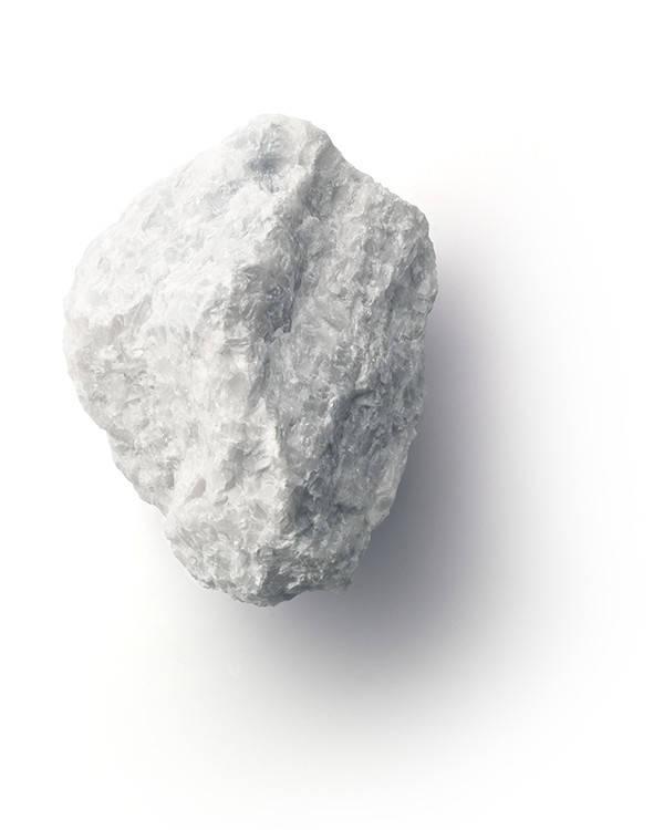 広報blog_身近なSDGs!石からできた名刺で地球を守る?!