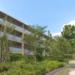 世田谷で「自然との調和」を実現した東急不動産のマンション誕生!ブランズシティ世田谷中町 - ビデオリリース・動画リリース配信|NewsTV