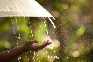 気分が落ち込む? 雨の日が私たちに与える影響とは