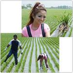 シブヤ米農作業レポVOL.5 ~草刈り・草取り