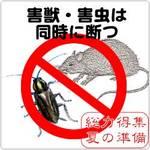 嫌な生き物の季節:ネズミ、ゴキブリの対策は?(夏の準備特集)