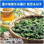 夏の味覚をお届け「JAタウン」の枝豆&なす!