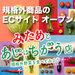 """大田市場直送""""規格外商品(規格外の青果物)""""のECサイト『みたあじ』オープン !!"""