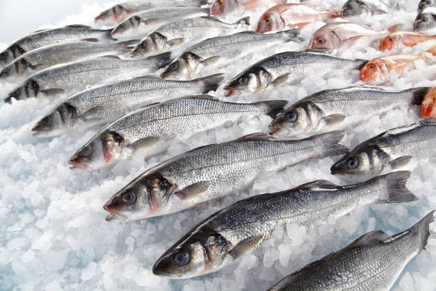 氷に乗った新鮮な魚