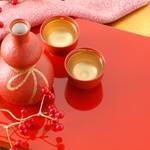 お正月に帰省するときのお土産は、みんなで飲める日本酒がおすすめ!