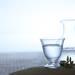 若い女性を中心に人気が広まる!!信州最古の酒蔵で生まれた逸品の日本酒