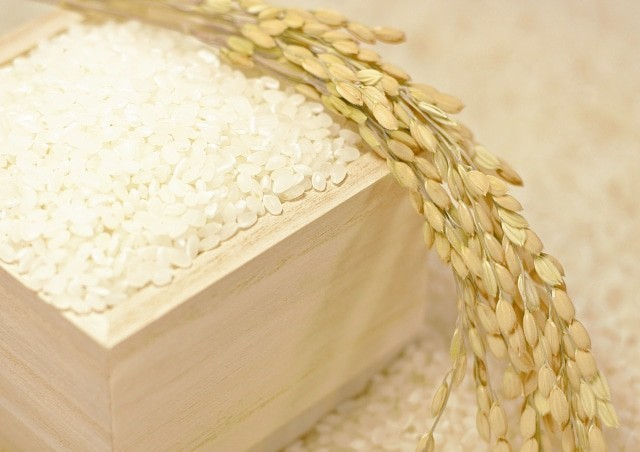 白米と酒米
