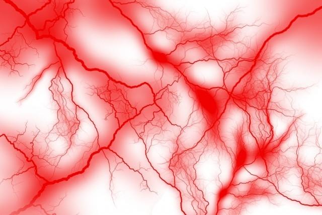 血液の流れ