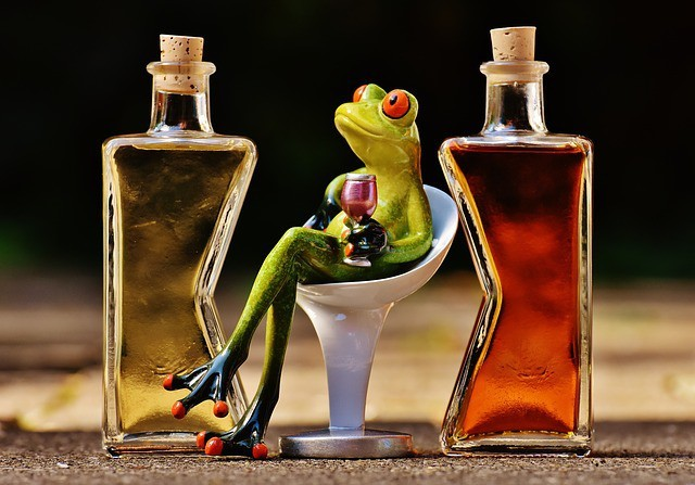 Free photo: Frogs, Chick, Beverages, Bottles - Free Image on Pixabay - 1650658 (793)