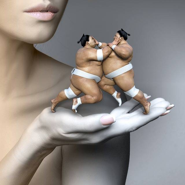 Cd Cover Woman Fantasy Sumo - Free image on Pixabay (9958)
