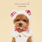 ペットもファッションを楽しみたい♫韓国で人気のおしゃれペット服✩✩