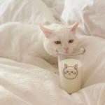 寝るだけでダイエット効果?「睡眠」と「ダイエット」の切っても離せない関係性とは…?