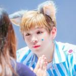 「動物」別に韓国男性芸能人をジャンル分け!あなたのタイプはどの顔?♡