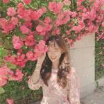 韓国のバラが綺麗な名所!インスタ映え間違いなしの『ローズホットプレイス⑤』♡