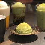 済州島の自然を感じられるお茶カフェ「O'sulloc TEA HOUSE」をご紹介☆