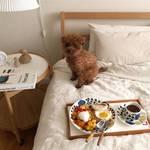 秋の模様替えにぴったり!韓国女子のお部屋作りに必須の「サイドテーブル」の使い方♡