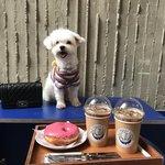 【第4弾】インスタ映えカフェに行きたい!『韓国・ソウル映えカフェBEST30』☆