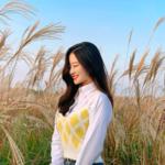 行くなら今しかない!ススキと空が絵になる韓国写真スポット♡♡
