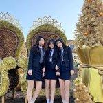 光り輝く冬の韓国を♡インスタ映えテーマパーク「エバーランドのゴールデンイルミネーション」☆
