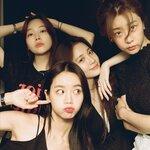 10年間の熱い友情関係が続いたK-POPガールズグループ「Girls Day」☆