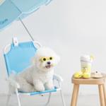 【国内購入可能】愛犬も韓国コーデ? 韓国『BITE ME(バイトミー)』のペットグッズをご紹介♪♡