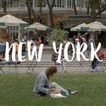 癒しのYouTubeタイムを⸝⋆『ニューヨークに暮らす韓国人の生活』に注目⸝⋆