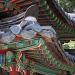 韓国生活・文化