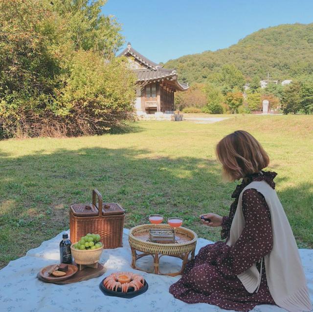 "𝑺𝑼𝑵𝑺𝑯𝑰𝑵𝑬 𝑺𝑺𝑼 on Instagram: "":올 가을 첫 피크닉🌿_"" (13712)"