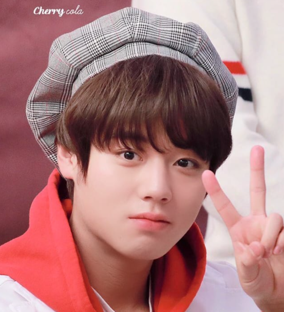 "PARK JIHOON 박지훈 WANNA ONE on Instagram: ""Jihoon in beret is the best thing ever😤❤—190405 Fansign 