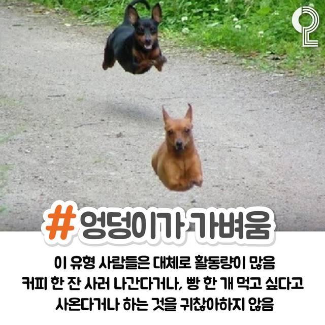 www.instagram.com/ (65356)