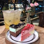 カロスキルにあるカフェでな27種ものチーズケーキが楽しめる!今韓国で話題のチーズケーキ専門店「C27 本店」