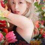 華やかなイメージのK-POP女性アイドルが愛用する香水特集♡【Part①】