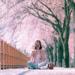 韓国の花見を体験しよう♫ソウルで見られる桜スポットをご紹介♡ - 韓国情報サイト Daon[ダオン]